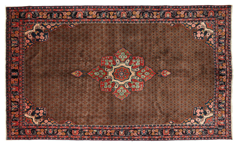 Koliai carpet 350x208