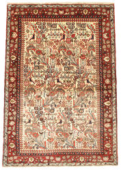 Rudbar carpet EXZH1279