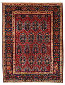 Afshar carpet EXL104