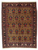 Afshar carpet VEXD1